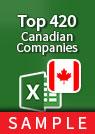 Top 420 Companies Excel sample