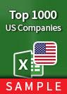 Top 1000 US Companies spreadsheet sample